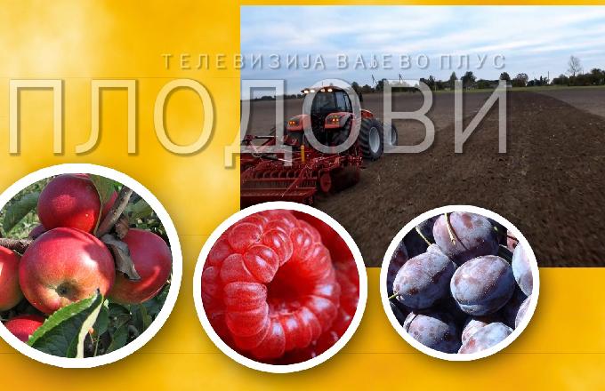 Plodovi 284 - 30. avgust 2020.